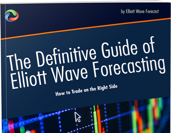 Elliott Wave Book : The Definitive Guide to Trade Like Pro