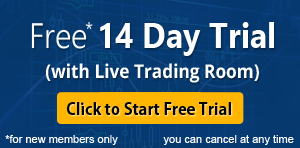 Elliott Wave Forecast Free 14 Day Trial