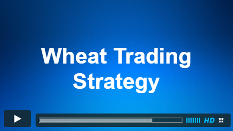 Wheat Trade 20 Feb 2018 Live Trading Room