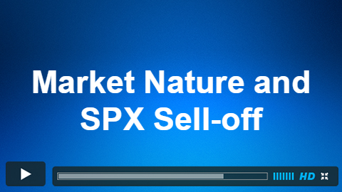 Market Nature: The Key In Avoiding Human Nature and Not Over-reacting to The SPX Sell-off