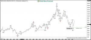 Bayer Elliott Wave Monthly